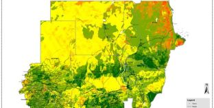 Land Degradation Monitoring and Assessment Service Field Validation in Sudan